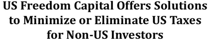 Minimize US Taxes for Non-US Investors